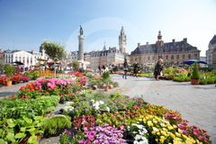 Lille 28103811